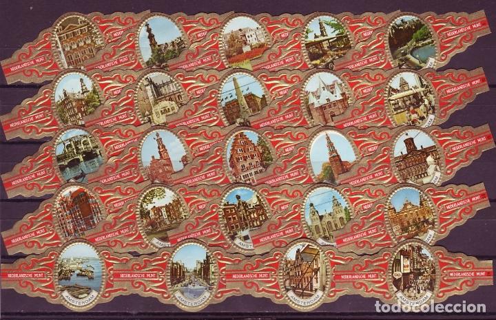 NEDERLANDSCHE MUNT, AMSTERDAM, 24 VITOLAS, SERIE COMPLETA. (Coleccionismo - Objetos para Fumar - Vitolas)
