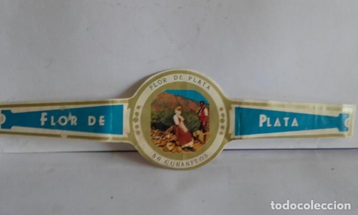 VITOLA DE PUROS / FLOR DE PLATA (Coleccionismo - Objetos para Fumar - Vitolas)