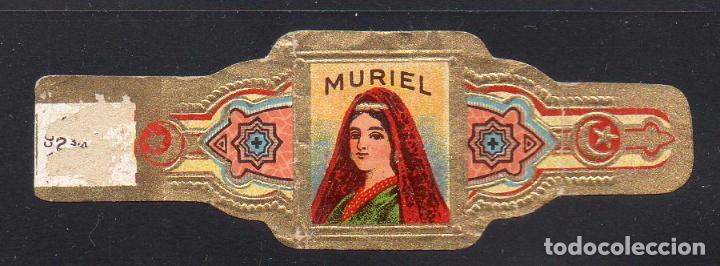 VITOLA CLASICA: 014003, TEMA MUJERES, MURIEL (Coleccionismo - Objetos para Fumar - Vitolas)