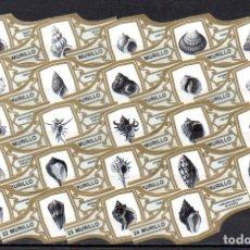 Vitolas de colección: MURILLO, CONCHAS MARINAS, GRIS, 24 VITOLAS, SERIE COMPLETA.. Lote 188716578