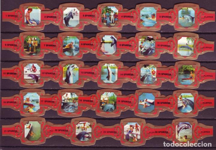 SPANERA, FLIPPER, ROJO, 24 VITOLAS, SERIE COMPLETA. (Coleccionismo - Objetos para Fumar - Vitolas)