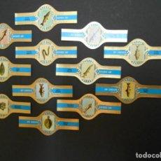 Vitolas de colección: 12 VITOLAS-PECES-SERIE COMPLETA-ROKENDE JAN-SERIE C. Lote 193429268