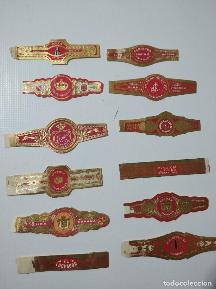 LOTE DE 12 ANTIGUAS VITOLAS CLÁSICAS DE LA HABANA (Coleccionismo - Objetos para Fumar - Vitolas)
