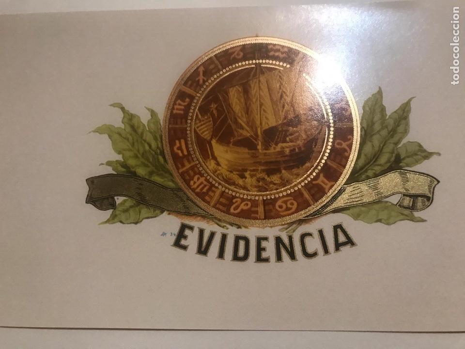 VITOLA EVIDENCIA (Coleccionismo - Objetos para Fumar - Vitolas)