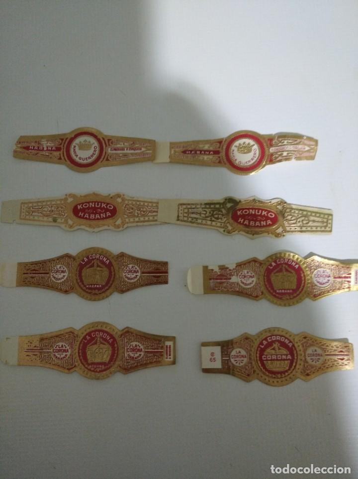 LOTE DE 8 VITOLAS CLÁSICAS DE LA HABANA VARIAS MARCAS (Coleccionismo - Objetos para Fumar - Vitolas)