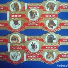 Vitolas de colección: NEREIDA, RAZAS DE PERROS, 10 VITOLINAS, SERIE COMPLETA.. Lote 195389703