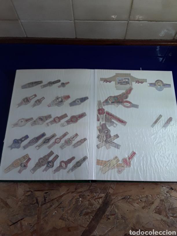 Vitolas de colección: Album de vitolas - Foto 4 - 201965406