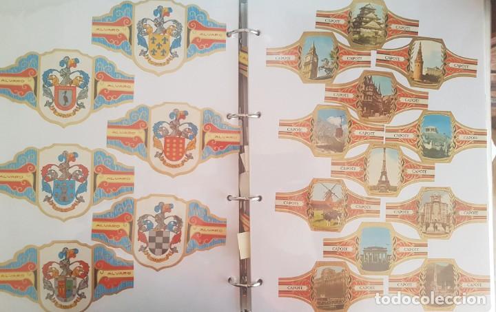 Vitolas de colección: LOTE +1000 VITOLAS - ALVARO, REIG, CAPOTE, ESMERALDA, LA FAMA, +ÁLBUM HOFMANN - Foto 3 - 206217800