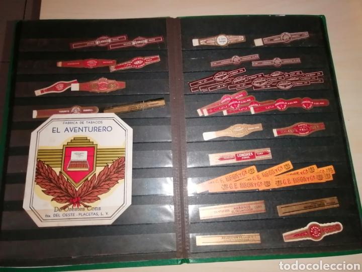 Vitolas de colección: Colección de antiguas vitolas La Habana, Cuba. - Foto 15 - 214022700