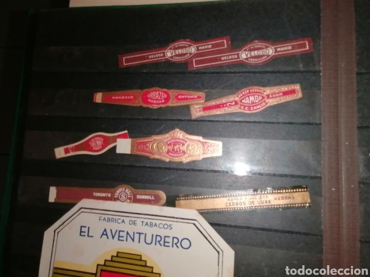 Vitolas de colección: Colección de antiguas vitolas La Habana, Cuba. - Foto 16 - 214022700