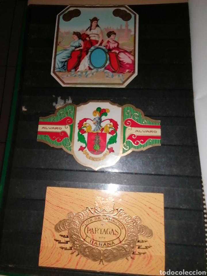 Vitolas de colección: Colección de antiguas vitolas La Habana, Cuba. - Foto 24 - 214022700