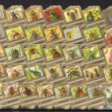 Vitolas de colección: WILLEM II, INSECTOS, SERIE XXV, 36 VITOLAS, SERIE COMPLETA.. Lote 216718203
