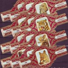 Vitolas de colección: ARAUTAPALA, ANIMALES, GRAN FORMATO, 24 VITOLINAS, SERIE COMPLETA.. Lote 221944848