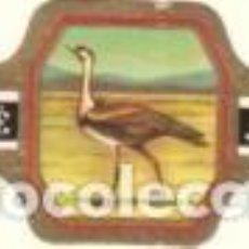 Vitolas de colección: VITOLAS JUBILE SERIE FAUNA - VER DISPONIBLES A 0,10 € CADA UNA. Lote 222331590