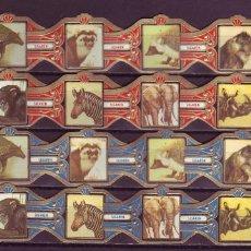 Anéis de charuto de coleção: DON DIAZ, MAMIFEROS, 24 VITOLAS, SERIE COMPLETA.. Lote 254073000