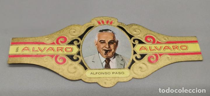 VITOLA - ALVARO - SERIE LITERATOS -ALFONSO PASO (Coleccionismo - Objetos para Fumar - Vitolas)