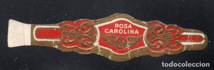 VITOLA CLASICA: 235061, TEMA RUEDAS ALADAS, ROSA CAROLINA (Coleccionismo - Objetos para Fumar - Vitolas)