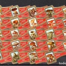 Bagues de cigare de collection: ROKENDE JAN, SETAS, SERIE 2ª, 24 VITOLAS, SERIE COMPLETA.. Lote 287457668