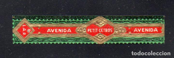 VITOLA CLASICA: 126012, PETIT CETROS, AVENIDA, ISLAS CANARIAS. (Coleccionismo - Objetos para Fumar - Vitolas)