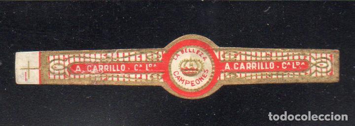 VITOLA CLASICA: 126018, TEMA CORONAS, CAMPEONES, A. CARRILLO, LA BELLEZA, ISLAS CANARIAS. (Coleccionismo - Objetos para Fumar - Vitolas)