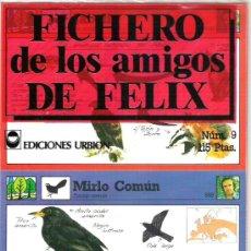 Coleccionismo: FICHERO DE LOS AMIGOS DE FELIX - NUMERO 9 A ESTRENAR. Lote 5911020