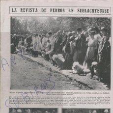 Coleccionismo: RECORTE DE PRENSA. AÑO 1919. PERROS EN SEHLACHTEUSEE. PROTECCION CANINA DE BERLIN.ALEMANIA. . Lote 24257792