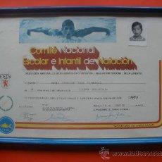 Coleccionismo: CERTIFICADO DE NATACION DE LA DELEGACION NACIONAL. Lote 30649937