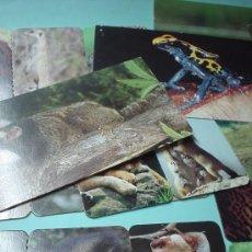 Coleccionismo: LOTE DE 9 FICHAS RECORTABLES DE ANIMALES. MERVEILLES DU MONDE. NESTLE. Lote 31686348
