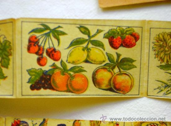 Coleccionismo: LOTE TRES TIRAS CALCOMANÍAS FANTASÍA - PRINCIPIOS S. XX - - Foto 2 - 33403447