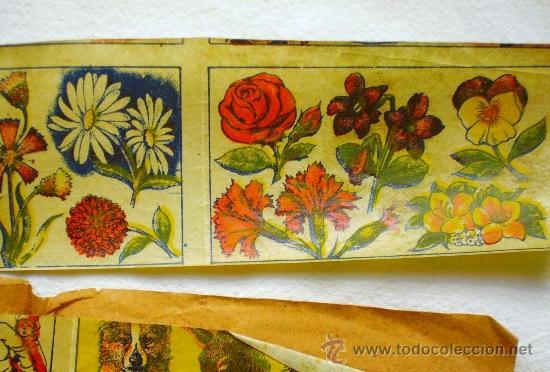 Coleccionismo: LOTE TRES TIRAS CALCOMANÍAS FANTASÍA - PRINCIPIOS S. XX - - Foto 7 - 33403447