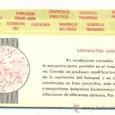 Coleccionismo: 11 FICHAS MÉDICAS, BRISTACICLINA. 12,5X7,5 CM. ENVÍO: 1,10 € *.. Lote 36800502