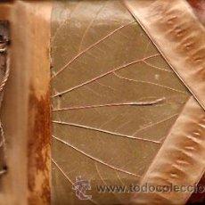 Coleccionismo: MINI ALBUM PARA FOTOS ( BLOC ) - PORTADAS HOJAS NATURALES. Lote 37206604