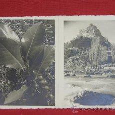 Coleccionismo: FELICITACIÓN DE NAVIDAD DOS FOTOGRAFÍAS EN BLANCO Y NEGRO IMPRESA EN INTERIOR EN CATALÁN 1951. Lote 38606760