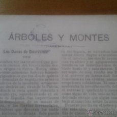 Coleccionismo: ARBOLES Y MONTES POR RICARDO CODORNIU LAS DUNAS DE GUARDAMAR 1902. Lote 42862382