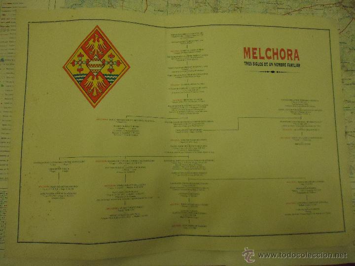 ARBOL GENEALOGICO HERALDICA APELLIDO MELCHORA ESCUDO TRES SIGLOS DE UN NOMBRE FAMILIAR GRAN TAMAÑO (Coleccionismo - Laminas, Programas y Otros Documentos)