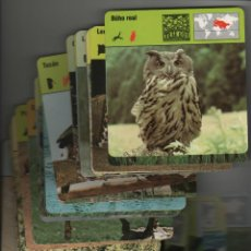 Coleccionismo: LOTE DE FICHAS DE 180 - CONOCER Y AMAR LOS ANIMALES SAFARI AGOSTINI.. Lote 44373656