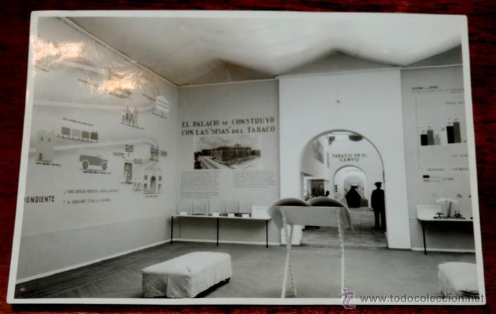 Coleccionismo: 22 FOTOGRAFIAS DE LA 1ª EXPOSICION NACIONAL DEL CULTIVO DEL TABACO, AÑO 1935, PALACIO DEL RETIRO, MA - Foto 3 - 51117782
