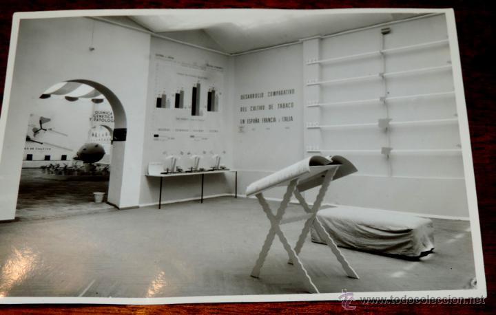 Coleccionismo: 22 FOTOGRAFIAS DE LA 1ª EXPOSICION NACIONAL DEL CULTIVO DEL TABACO, AÑO 1935, PALACIO DEL RETIRO, MA - Foto 7 - 51117782