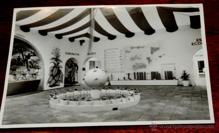 Coleccionismo: 22 FOTOGRAFIAS DE LA 1ª EXPOSICION NACIONAL DEL CULTIVO DEL TABACO, AÑO 1935, PALACIO DEL RETIRO, MA - Foto 10 - 51117782