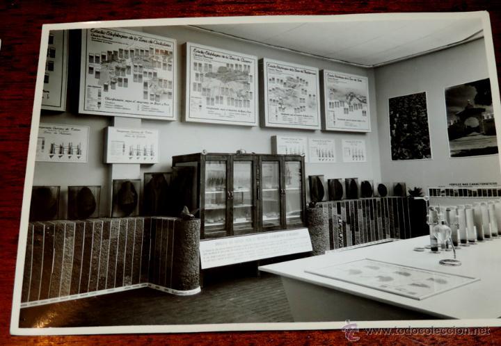 Coleccionismo: 22 FOTOGRAFIAS DE LA 1ª EXPOSICION NACIONAL DEL CULTIVO DEL TABACO, AÑO 1935, PALACIO DEL RETIRO, MA - Foto 12 - 51117782