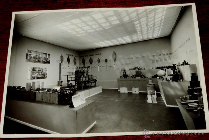 Coleccionismo: 22 FOTOGRAFIAS DE LA 1ª EXPOSICION NACIONAL DEL CULTIVO DEL TABACO, AÑO 1935, PALACIO DEL RETIRO, MA - Foto 13 - 51117782