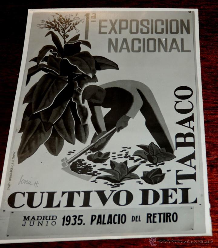 Coleccionismo: 22 FOTOGRAFIAS DE LA 1ª EXPOSICION NACIONAL DEL CULTIVO DEL TABACO, AÑO 1935, PALACIO DEL RETIRO, MA - Foto 15 - 51117782