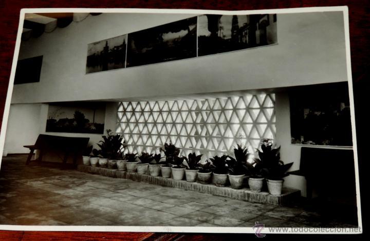 Coleccionismo: 22 FOTOGRAFIAS DE LA 1ª EXPOSICION NACIONAL DEL CULTIVO DEL TABACO, AÑO 1935, PALACIO DEL RETIRO, MA - Foto 18 - 51117782