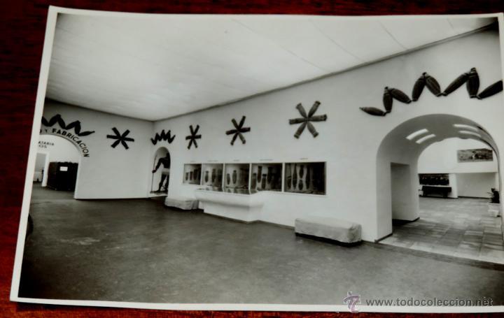 Coleccionismo: 22 FOTOGRAFIAS DE LA 1ª EXPOSICION NACIONAL DEL CULTIVO DEL TABACO, AÑO 1935, PALACIO DEL RETIRO, MA - Foto 22 - 51117782