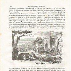 Coleccionismo: LAMINA 3451: GUERRA DE LOS CIEN AOS. Lote 57624816