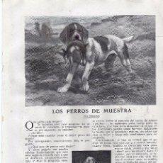 Coleccionismo: RECORTE PRENSA DE 1919-LOS PERROS DE MUESTRA. Lote 67049998