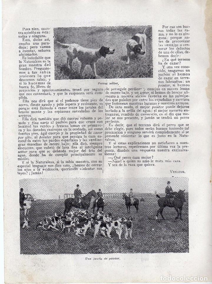 Coleccionismo: RECORTE PRENSA DE 1919-LOS PERROS DE MUESTRA - Foto 2 - 67049998