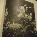 Coleccionismo: 31,5 X 24 ANTIGUA LAMINA SEMANA SEVILLA SANTA BLANCO Y NEGRO - VIRGEN DE LA SOLEDAD. Lote 76073707