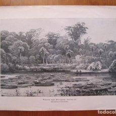 Coleccionismo: VISTA TROPICAL CON GRANDES FLORES ACUÁTICAS(VICTORIA REGIA) EN EL RÍO PARAGUAY, 1802.. Lote 78237765