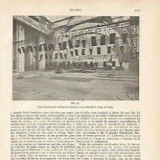 Coleccionismo: LAMINA ESPASA 5813: SISTEMA DE ILUMINACION FORTUNY PARA LA SCALA DE MILAN. Lote 95763902